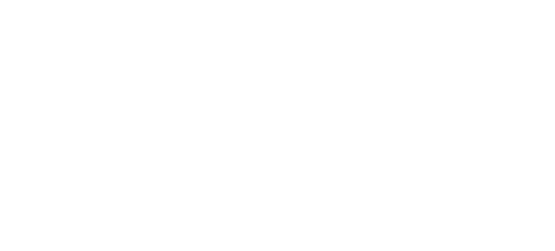 carlo-alberto-franzon-logo-chiaro